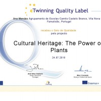 cultural_heritage-the_power_of_plants